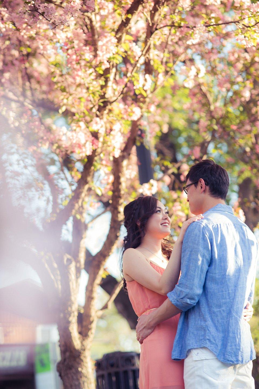 AD-Edmonton-Cherry-Blossoms-engagement-_0038