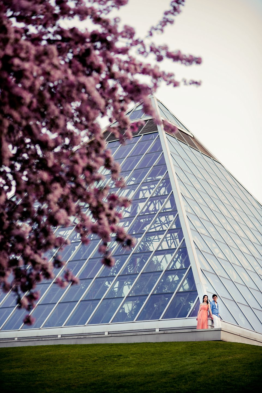 AD-muttart-Cherry-Blossoms-engagement-_0041