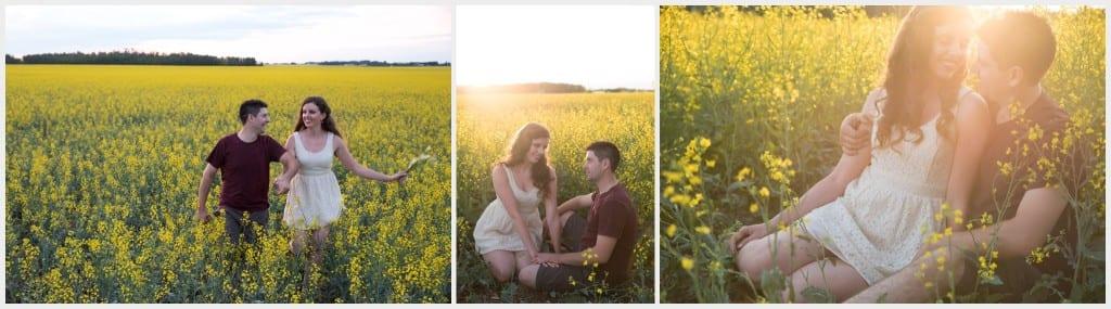 Calgary Canola Fields Photography Beautiful Scenery