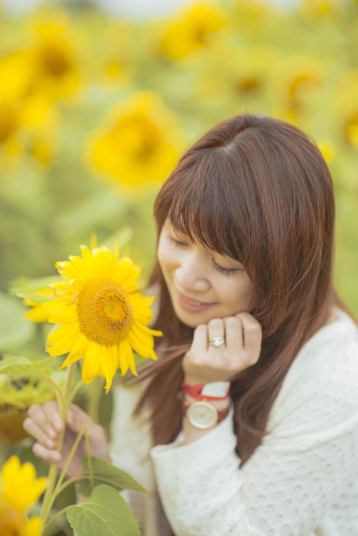 Edmonton-sunflower-engagement-photo-session-miruku-13