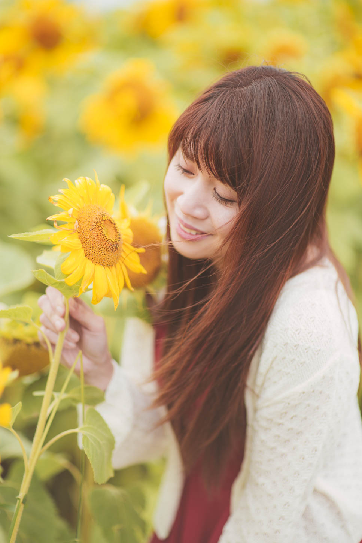 Edmonton-sunflower-engagement-photo-session-miruku-15