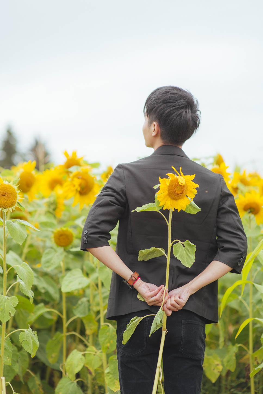 Edmonton-sunflower-engagement-photo-session-miruku-18