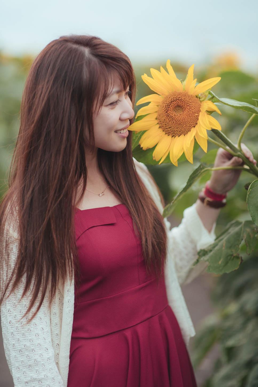 Edmonton-sunflower-engagement-photo-session-miruku-6