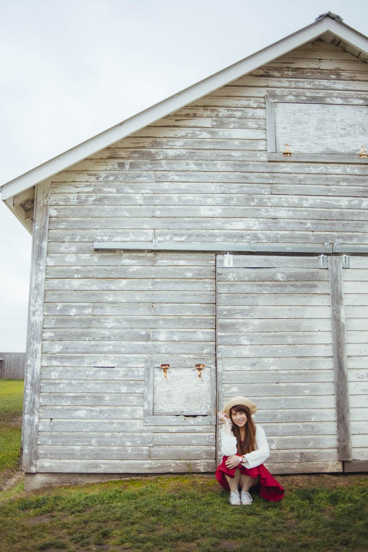 Edmonton-sunflower-engagement-photo-session-miruku