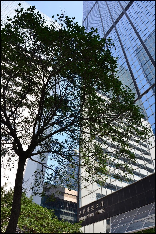 Hong Kong Immigration Tower_218
