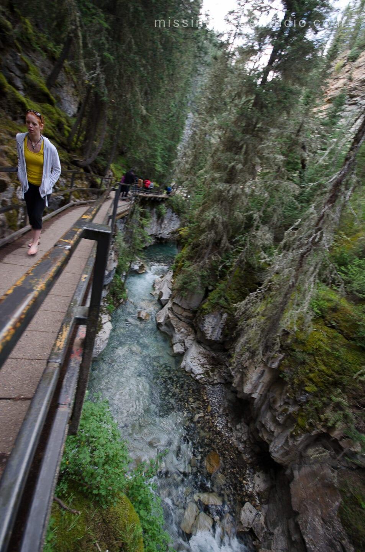 Johnston Canyon Creek-Banff Canada-Alberta015
