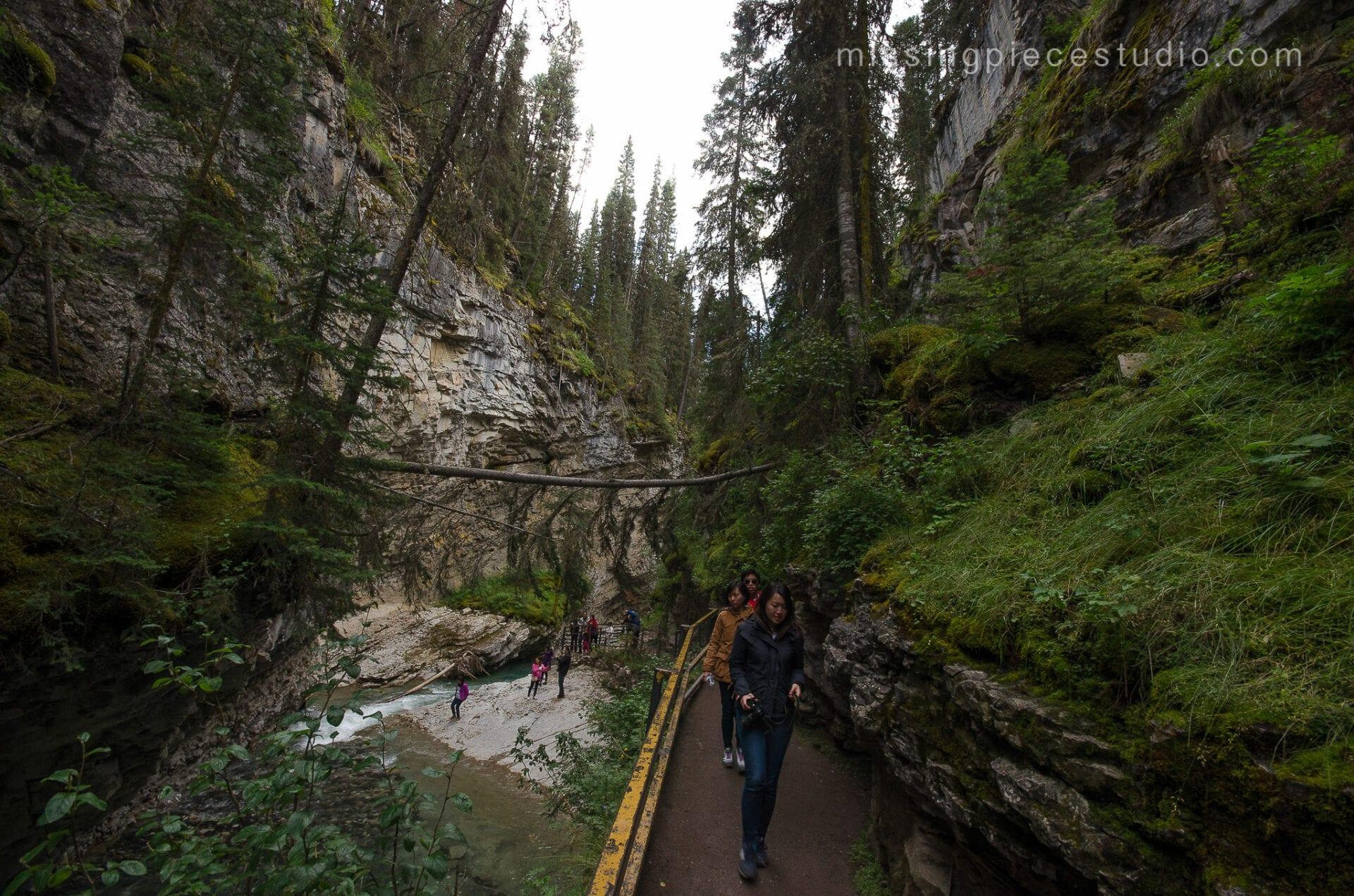 Johnston Canyon Creek-Banff Canada-Alberta025