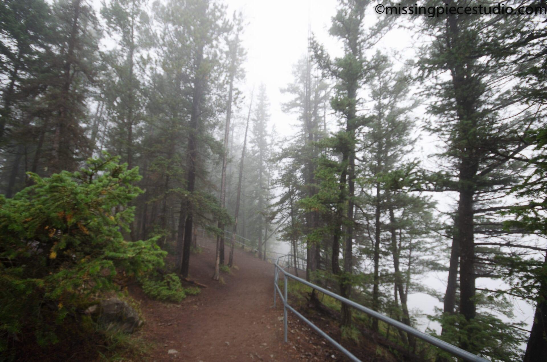 Tunnel Mountain -Banff Canada-Alberta034