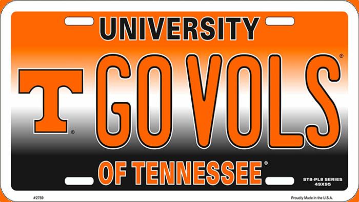 Eu fiz faculdade na Unversidade de Tennessee.   Inglês BÁSICO Todos os Dias #162