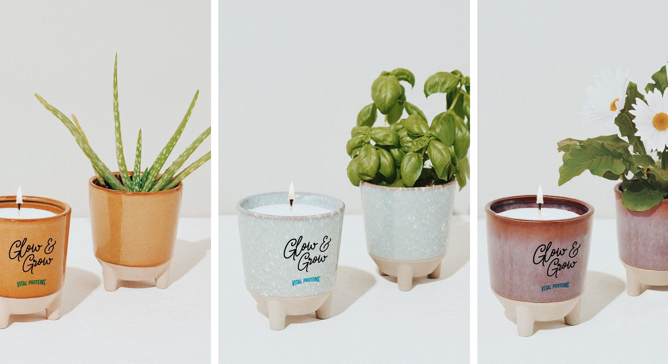 Modern Sprout Glow & Grow Gift Set
