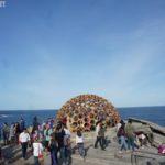 【雪梨小確幸】邦黛海灘雕塑展 .::雪梨最美戶外藝術展::. (Sculpture by the Sea, Bondi 2012)
