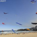 【Sydney Life】Festival of the Winds, Bondi