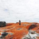 【澳洲旅遊】火焰灣 Bay of Fires .::白沙、藍海、紅如烈燄般的石頭::.