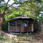 【Hawaii Travel Blog】Nature's Cottage .::a very unique Big Island Airbnb experience::.