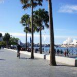 【悉尼游记】Circular Quay 一见钟情二见倾心,无可取代的环型码头