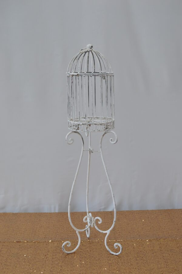 Vintage Standing Cage