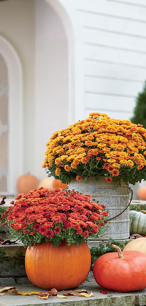 Autumn Outdoor Decorating