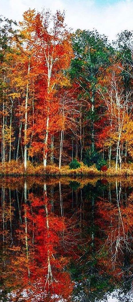 Autumn Reflections | Veranda Magazine
