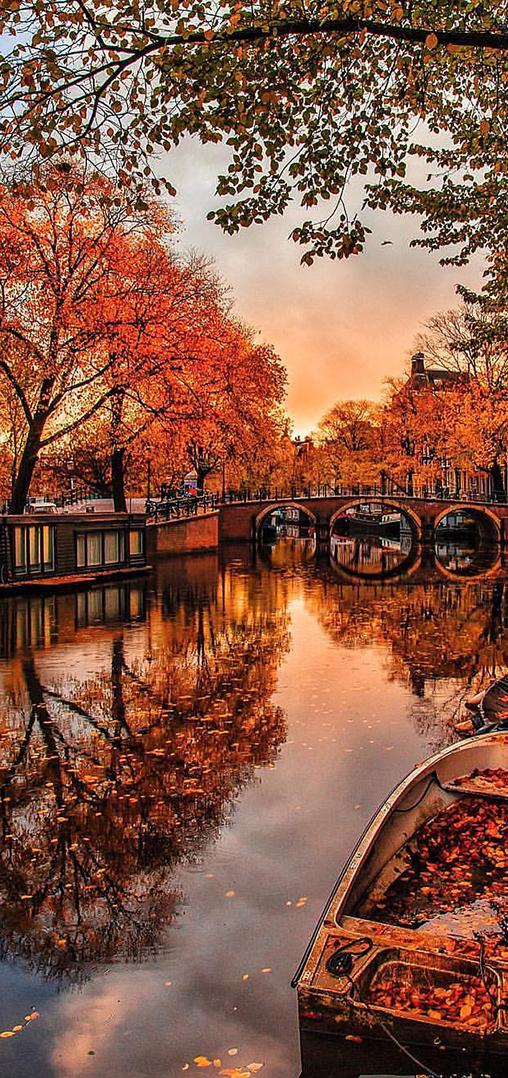 Amsterdam in the Fall | Kardinal Melon