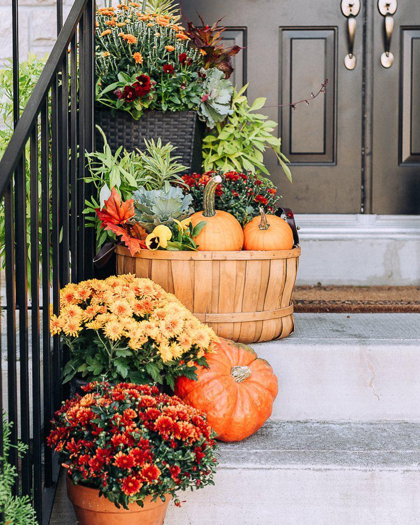 Fall Entranceway | Craftberry Bush
