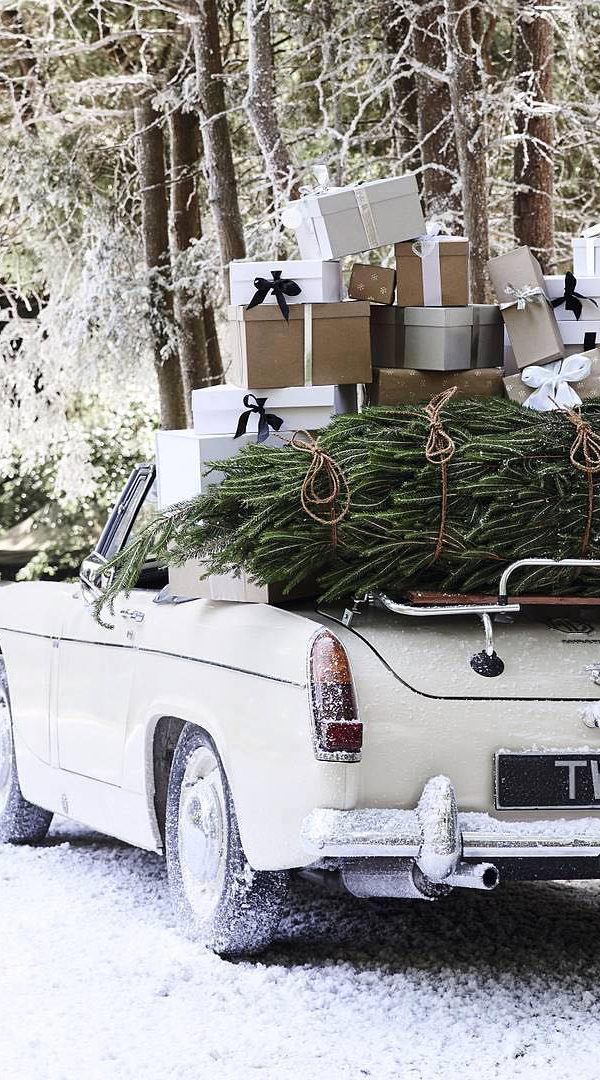 The Magic of Christmas   The Winter White Company