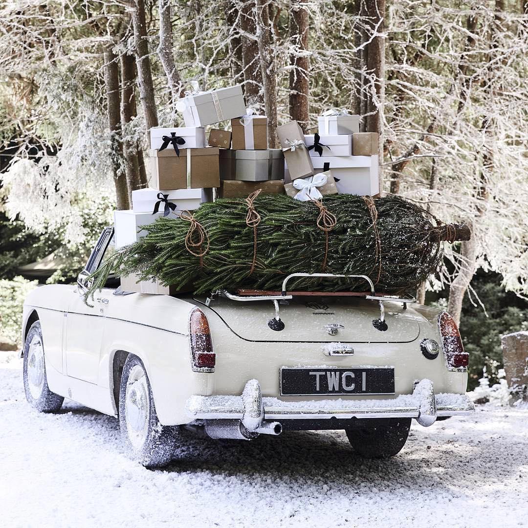 The Magic of Winter | The White Company