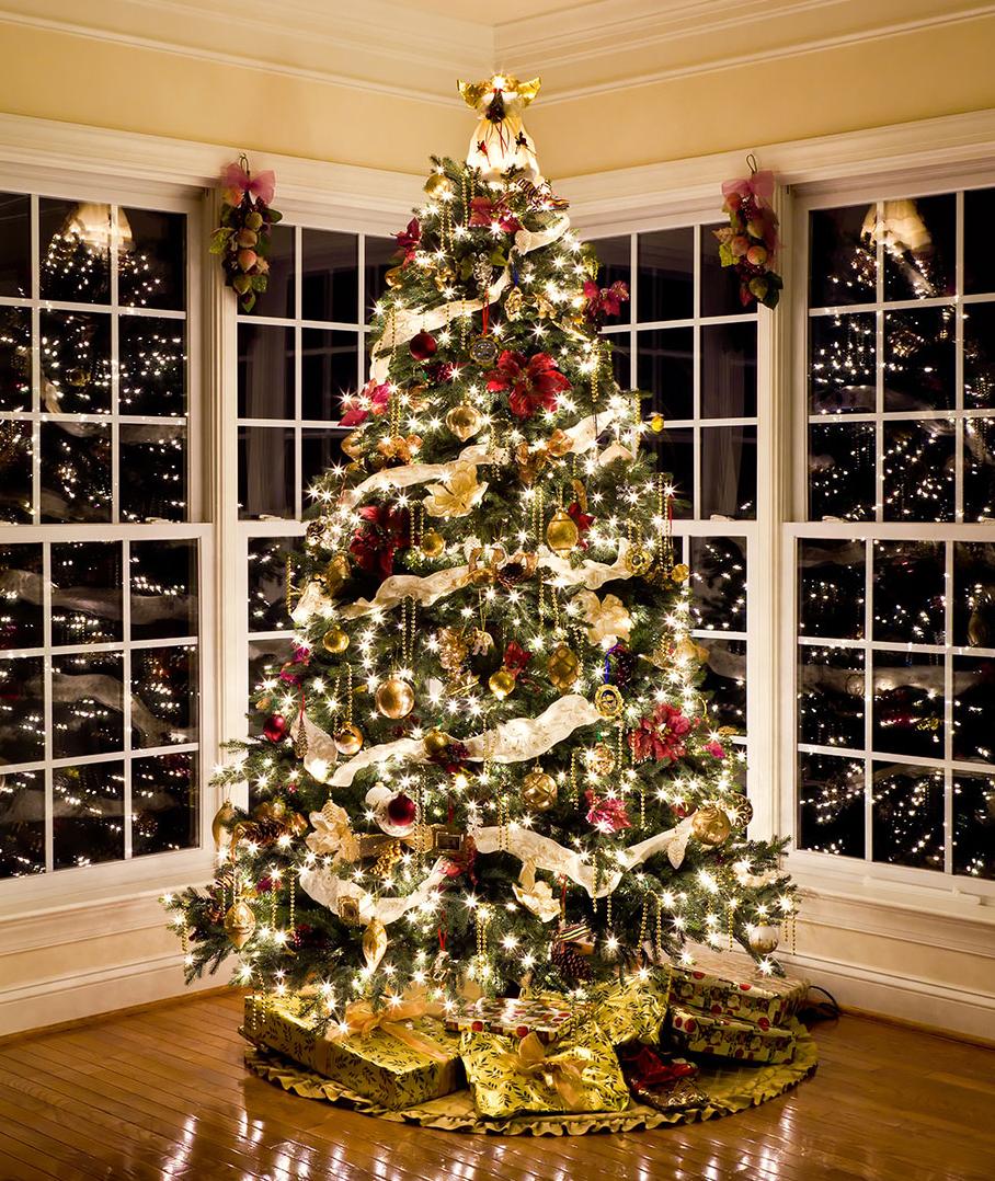 Christmas Decorating Ideas   Shonna Fox Design