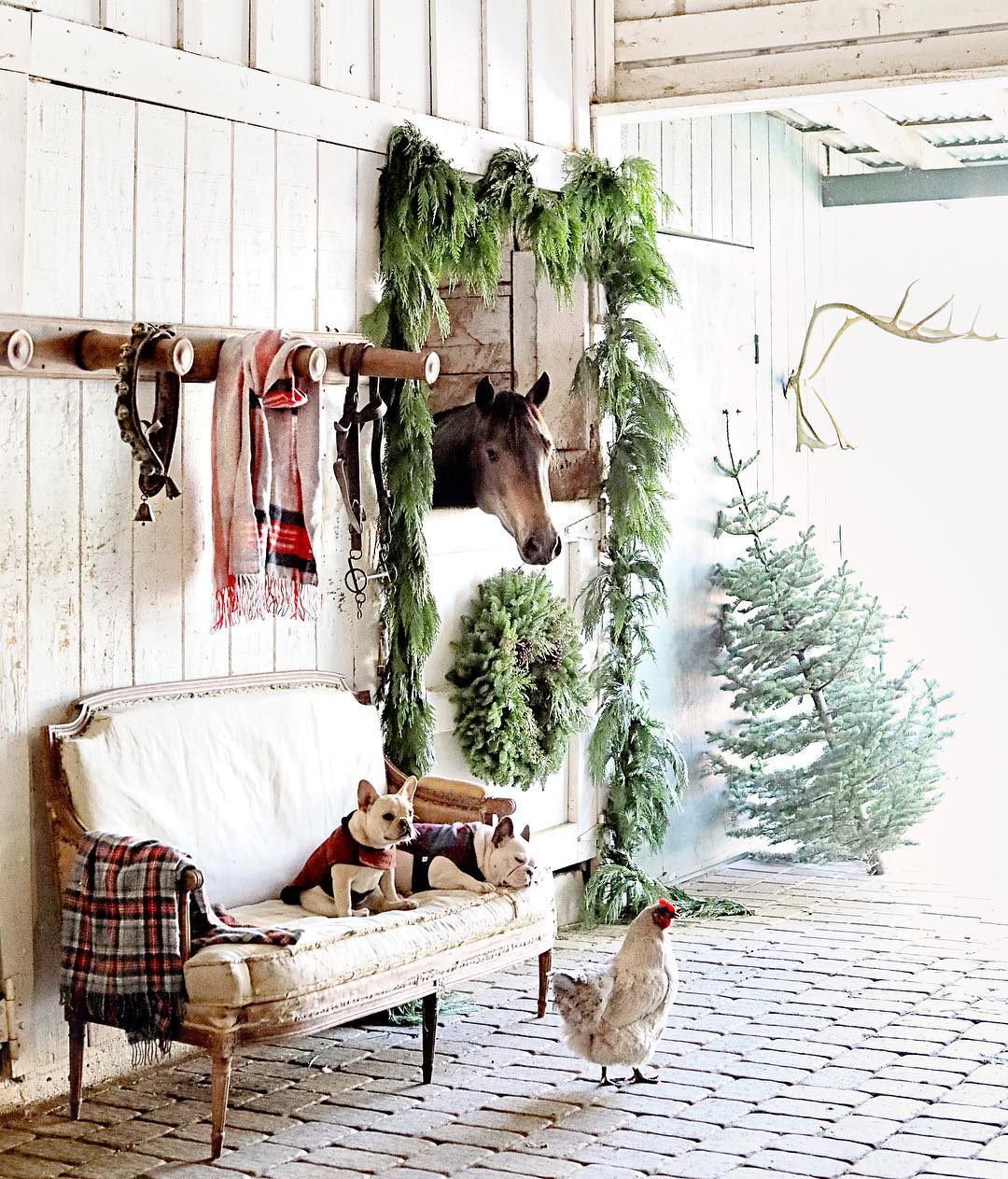 Country Christmas   Dreamy White Life Style