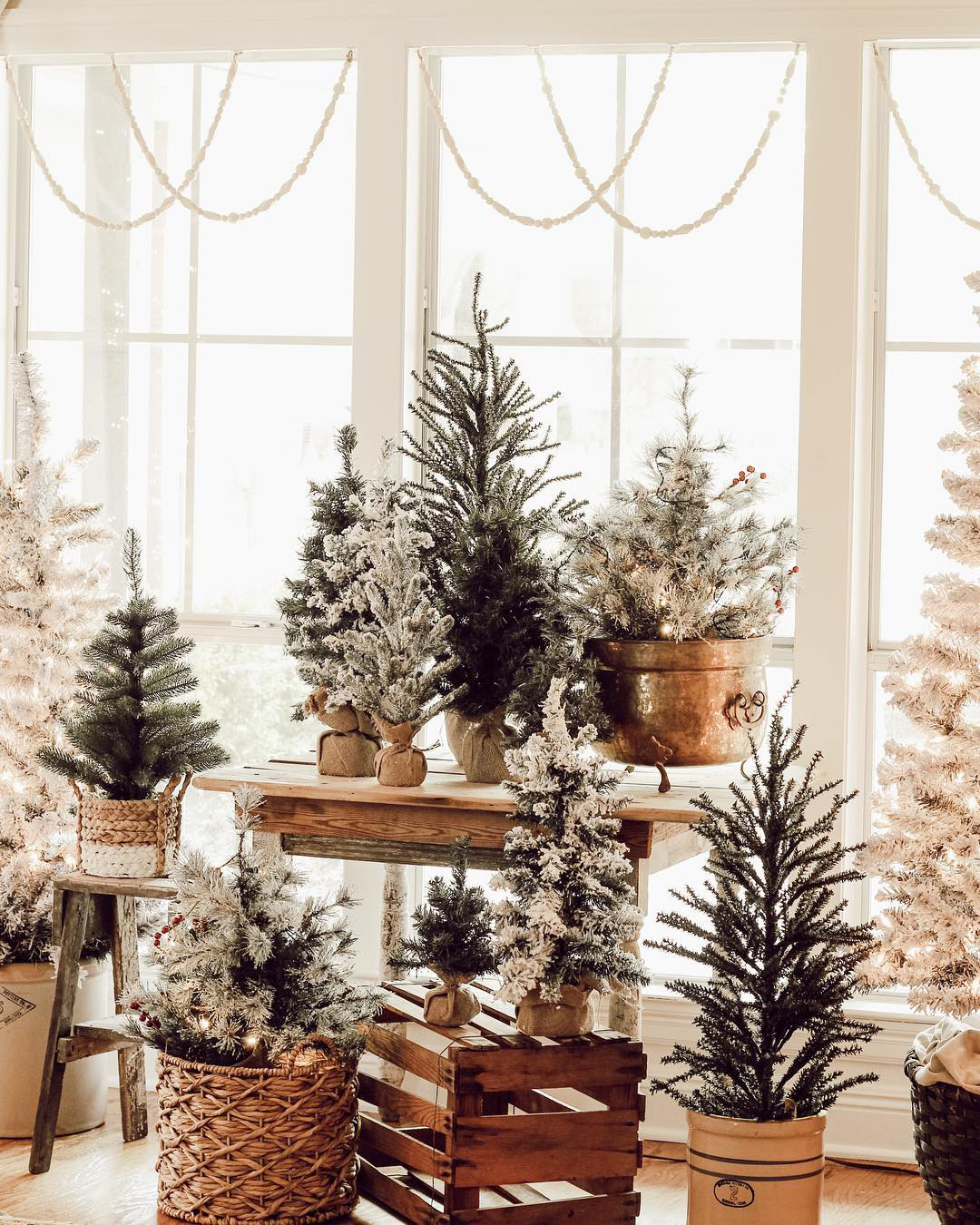 Rustic Christmas Trees   Beauty For Ashes Home