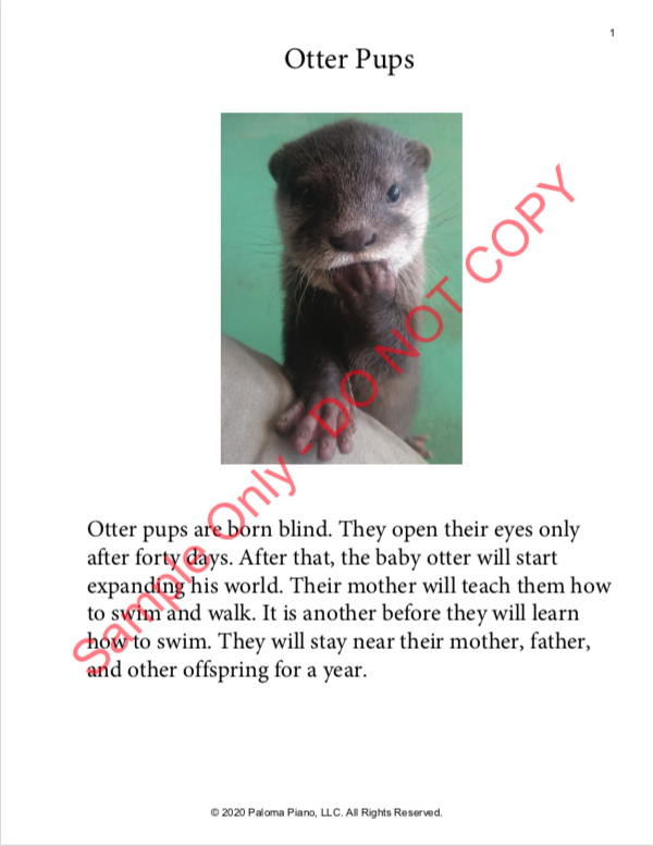 Paloma Piano - Spring Baby Animals - Otter Pups - Page 1