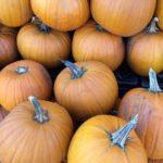 It Is The Great Pumpkin Soup!