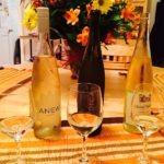 Meet Riesling Wine