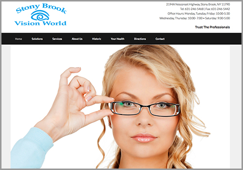 Stony Brook Vision World Web Site