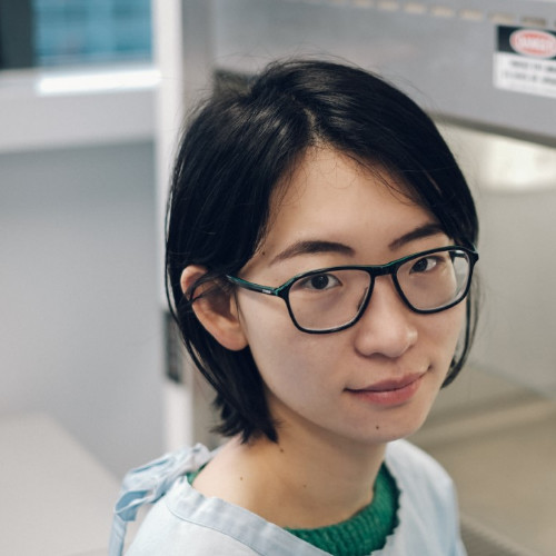 Amy Jiang
