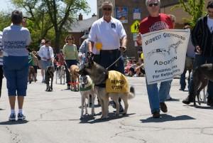 SRBA - Pet Parade - 2008 - 0805170194 G.sized