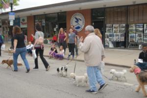 Spring Road Business Association - Pet Parade 2018 - 08