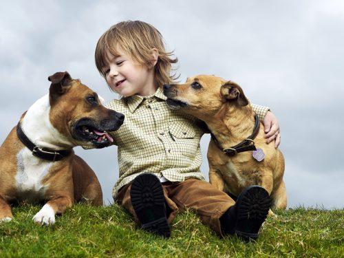 Una mascota ayuda a los niños a expresar sus emociones