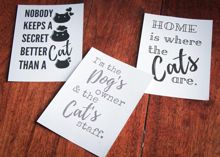 free cat printables