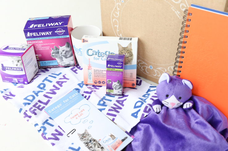 great products for cat owners