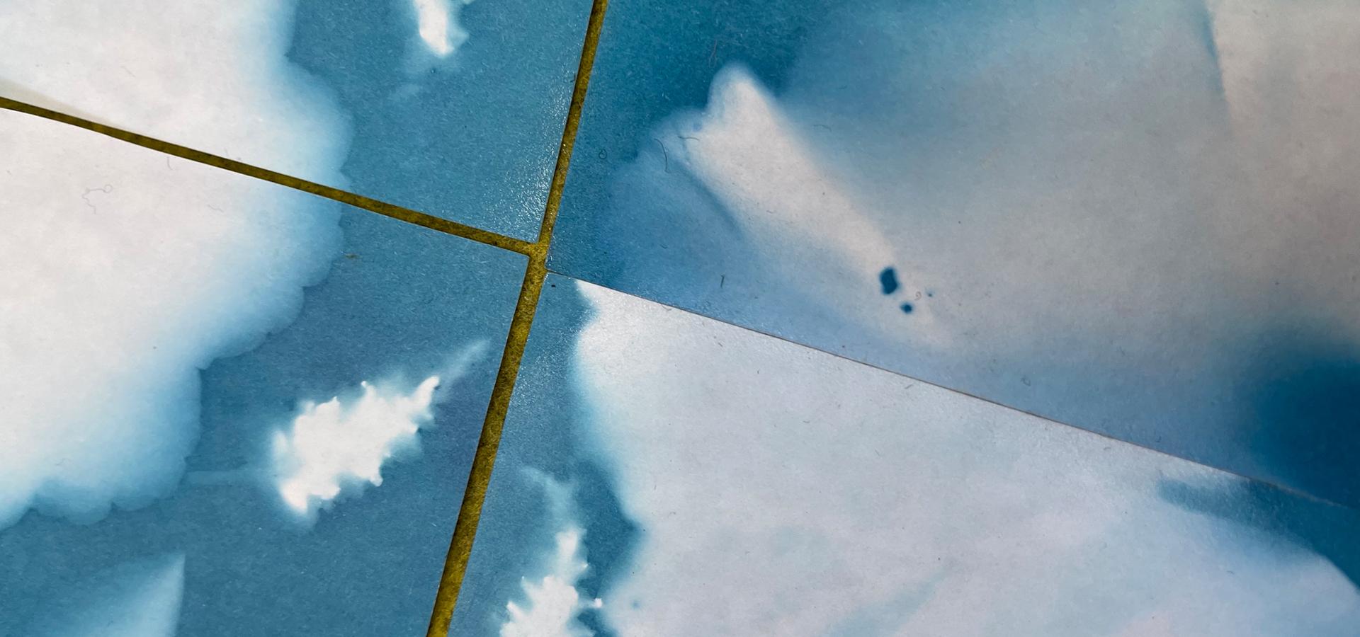Blue cyanotype of leaf