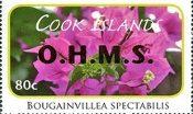 Flower Definitive OHMS