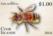 Entomology Definitive Part 2