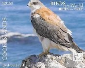 Birds of Prey - Part 2