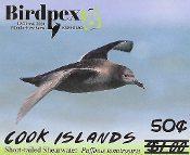 BirdPex Revalued