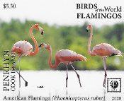 Penrhyn - Birds of the World - Flamingos