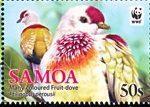 Samoa - WWF - 2011