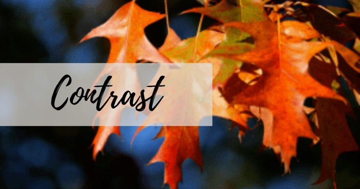 Blog: Contrast
