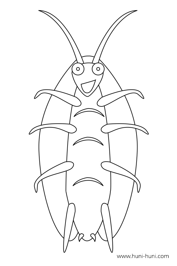 flashcard-coloring-page-outline-insect-cockroach-uk-ok