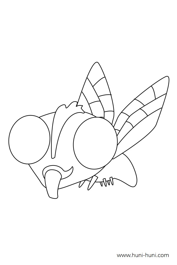 flashcard-coloring-page-outline-insect-fly-langaw
