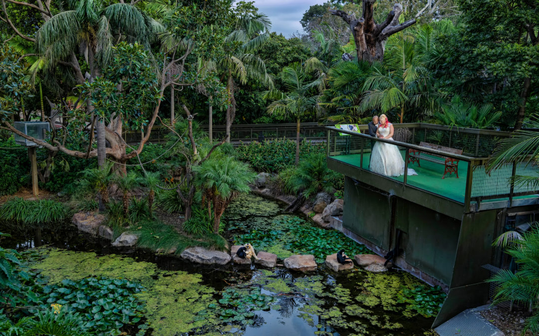 WHY HIRE A WEDDING EVENT PLANNER ADELAIDE?